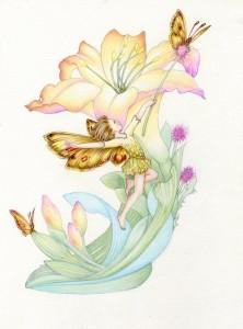 Lily Fairy Butterfly ©Myrea Pettit